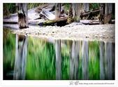 * 美景 總在千山萬水之後 ~ 水漾森林 (4):TW-Blog-23(2)-56.jpg