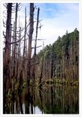 * 美景 總在千山萬水之後 ~ 水漾森林 (4):TW-Blog-23(2)-55.jpg
