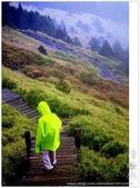 * 3422米高的幸福 ~ 合歡山 秋の遊 (3):TW-Blog-Pic-28(2)-21.jpg