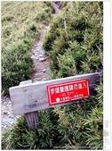 * 3422米高的幸福 ~ 合歡山 秋の遊 (5):TW-Blog-Pic-28(2)-142.jpg