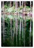 * 美景 總在千山萬水之後 ~ 水漾森林 (3):TW-Blog-23(2)-11.jpg