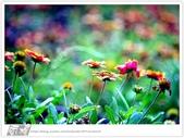 我從另一角度 ~ 望見 澎湖 馬公の美 & 自己的心情:WA-Blog-13-5-010.jpg