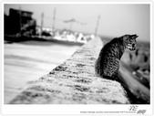寂靜 の 西 ~ 澎湖群島 花嶼 (2):WA-Blog-13-4-062.jpg