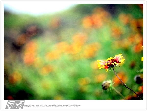 我從另一角度 ~ 望見 澎湖 馬公の美 & 自己的心情:WA-Blog-13-5-028.jpg