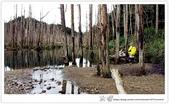 * 美景 總在千山萬水之後 ~ 水漾森林 (3):TW-Blog-23(2)-06.jpg
