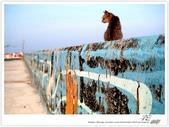寂靜 の 西 ~ 澎湖群島 花嶼 (2):WA-Blog-13-4-065.jpg