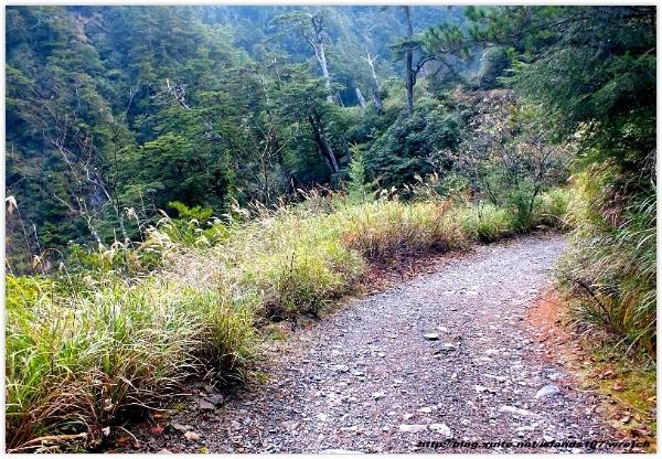 * 山風15度C吹拂 ~ 合歡溪 步道 (2):TAT-Blog-22-94.jpg