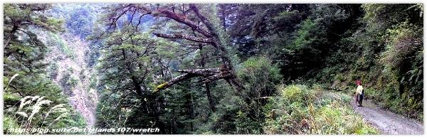 * 山風15度C吹拂 ~ 合歡溪 步道 (2):TAT-Blog-22-107.jpg