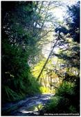 * 山風15度C吹拂 ~ 合歡溪 步道 (2):TAT-Blog-22-63.jpg