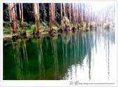 * 美景 總在千山萬水之後 ~ 水漾森林 (4):TW-Blog-23(2)-52.jpg