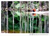 * 美景 總在千山萬水之後 ~ 水漾森林 (4):TW-Blog-23(2)-53.jpg