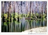 * 美景 總在千山萬水之後 ~ 水漾森林 (4):TW-Blog-23(2)-63.jpg