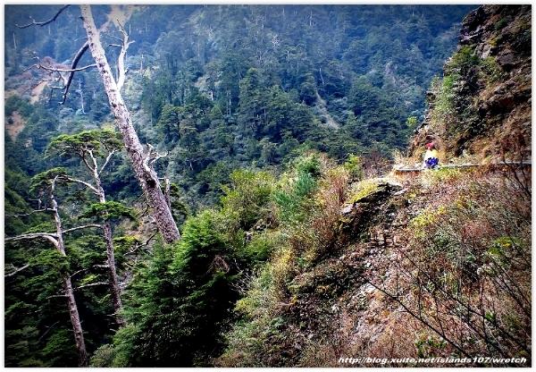 * 山風15度C吹拂 ~ 合歡溪 步道 (2):TAT-Blog-22-106.jpg