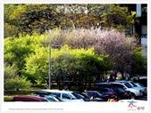 太魯閣 ~ 步道冬遊 2014 ~ part 6:TAT-Blog-35-160.jpg