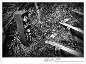 * 望見 玉山 之巔 ~ 塔山 步道 (4 篇):TAT-Blog-21-190.jpg