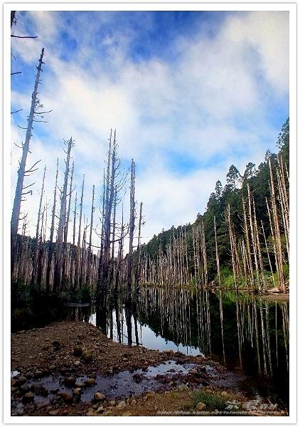 * 美景 總在千山萬水之後 ~ 水漾森林 (1):
