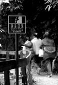 太魯閣 ~ 步道冬遊 2014 ~ part 3 ( 2012 光影~):TAT-08-356B.  路 途 ~ ! ( 花蓮 太魯閣 - 砂卡礑  )  2012.2.26.jpg