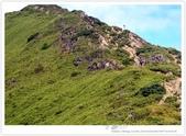 * 3422米高的幸福 ~ 合歡山 秋の遊 (4):TW-Blog-Pic-28(2)-71.jpg
