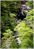 * 山風15度C吹拂 ~ 合歡溪 步道 (2):TAT-Blog-22-104.jpg