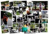 太魯閣 ~ 步道冬遊 2014 ~ part 3 ( 2012 光影~):太魯閣 2012年 Part 2.jpg
