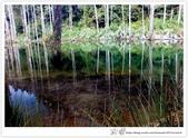 * 美景 總在千山萬水之後 ~ 水漾森林 (4):TW-Blog-23(2)-70.jpg