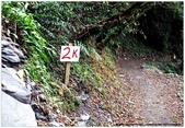 * 千年沉睡裡;甦醒著 ~ 司馬庫斯 & 鎮西堡 (中篇) Part 2:TW-Blog-Pic-30(2)-72.jpg