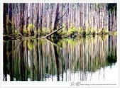 * 美景 總在千山萬水之後 ~ 水漾森林 (3):TW-Blog-23(2)-46.jpg