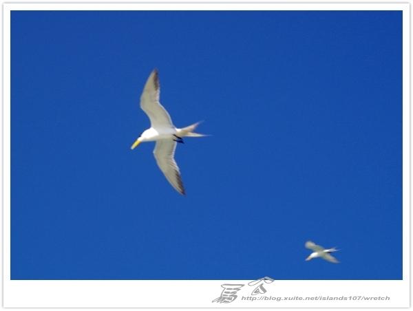 * 我從另一角度 ~ 望見 澎湖 馬公の美 & 自己的心情 (2):WA-Blog-13-5-080.jpg