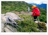 * 3422米高的幸福 ~ 合歡山 秋の遊 (4):TW-Blog-Pic-28(2)-72.jpg