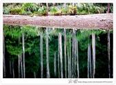 * 美景 總在千山萬水之後 ~ 水漾森林 (3):TW-Blog-23(2)-13.jpg