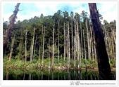 * 美景 總在千山萬水之後 ~ 水漾森林 (3):TW-Blog-23(2)-18.jpg