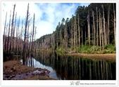 * 美景 總在千山萬水之後 ~ 水漾森林 (3):TW-Blog-23(2)-19.jpg