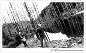 * 美景 總在千山萬水之後 ~ 水漾森林 (4):TW-Blog-23(2)-58.jpg