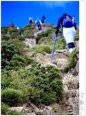 * 3422米高的幸福 ~ 合歡山 秋の遊 (4):TW-Blog-Pic-28(2)-77.jpg