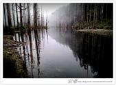 * 美景 總在千山萬水之後 ~ 水漾森林 (4):TW-Blog-23(2)-66.jpg