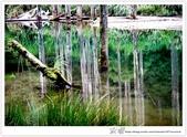 * 美景 總在千山萬水之後 ~ 水漾森林 (4):TW-Blog-23(2)-68.jpg