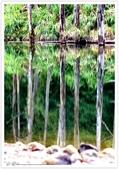 * 美景 總在千山萬水之後 ~ 水漾森林 (3):TW-Blog-23(2)-03.jpg