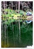 * 美景 總在千山萬水之後 ~ 水漾森林 (3):TW-Blog-23(2)-10.jpg