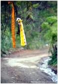 * 山風15度C吹拂 ~ 合歡溪 步道 (3):TAT-Blog-22-173.jpg