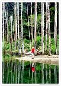 * 美景 總在千山萬水之後 ~ 水漾森林 (3):TW-Blog-23(2)-04.jpg