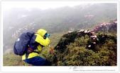 * 3422米高的幸福 ~ 合歡山 秋の遊 (3):TW-Blog-Pic-28(2)-10.jpg