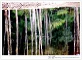 * 美景 總在千山萬水之後 ~ 水漾森林 (3):TW-Blog-23(2)-44.jpg