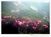 * 3422米高的幸福 ~ 合歡山 秋の遊 (3):TW-Blog-Pic-28(2)-20.jpg
