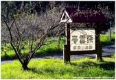 * 山風15度C 吹拂 ~ 合歡溪 步道 (4) :