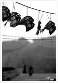 寂靜 の 西 ~ 澎湖群島 花嶼 (2):WA-Blog-13-4-069.jpg