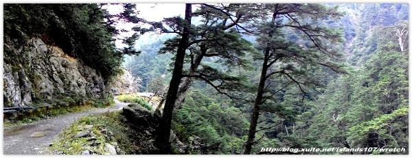 * 山風15度C吹拂 ~ 合歡溪 步道 (2):TAT-Blog-22-116.jpg
