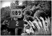 * 山風15度C吹拂 ~ 合歡溪 步道 (1):TAT-Blog-22-30.jpg