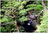 * 山風15度C吹拂 ~ 合歡溪 步道 (3):TAT-Blog-22-136.jpg