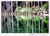 * 美景 總在千山萬水之後 ~ 水漾森林 (4):TW-Blog-23(2)-69.jpg