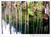 * 美景 總在千山萬水之後 ~ 水漾森林 (3):TW-Blog-23(2)-12.jpg